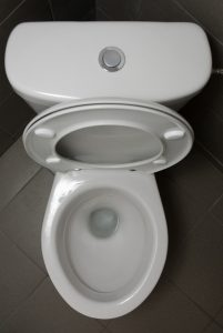 aerial-view-of-open-toilet